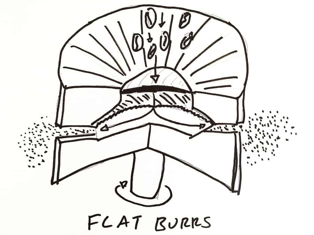 Flat burr coffee grinder diagram