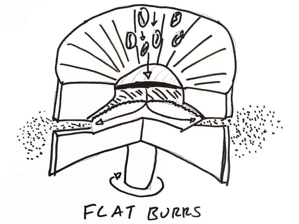 Flat burr coffee grinder diagram